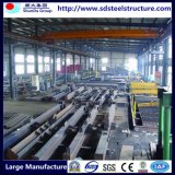 De Structuur van het Frame van het Staal van nieuwe Producten van de Leverancier van China