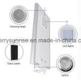 Миниые панели солнечных батарей продают напольный солнечный свет оптом Streeet светильника интегрированный IP65 солнечный для сбывания