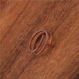 De nieuwe Ring van het Karakter van de Lente T van het Ontwerp Holle