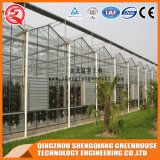 Multi-Überspannung Stahlkonstruktion-Polycarbonat-Blatt-Gewächshaus