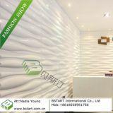 La BST 3D Intérieur panneaux muraux, montage mural Panneau décoratif (BST10005)