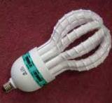 Spiraalvormige Energie - de Lamp van de besparing met het Koelen van Gat (E0410007)