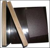 Coffrage de bois de charpente