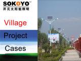 CE voyant feux de la rue solaire approuvé avec 6m Pole-Village cas du projet