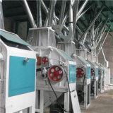 Flour elettrico Mill (6FTS-19 per frumento/mais/cereale)