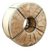 Bobina d'acciaio laminata (TFS0601)