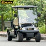 熱い販売2のシートのキャリアが付いている電気ゴルフカート