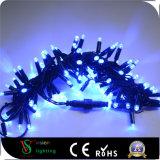 Décoration de la rue feux à LED IP44 avec câble PVC de chaîne