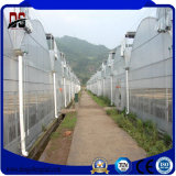 Estufa comercial da película plástica da Multi-Extensão do baixo custo para Growing vegetal
