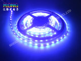 SMD LED 5050 RGB LED Strip Multi-Color