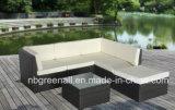 Rotin réglé de sofa de patio/jeu en osier de meubles de jardin
