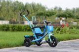 2016명의 아이 세발자전거 공장 공급