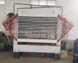 Placage de base de contreplaqué sécheur 30 de la machine de séchage de placages CBM/jour