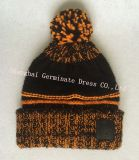 Теплый вязания Red Hat и шаль с кожаными патч (JYB346)