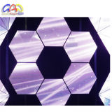 Chaud ! ! ! Panneau polychrome d'affichage vidéo du modèle d'intérieur /RGB P6 DEL d'hexagone
