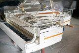 自己の演劇システム(GH-190A)が付いている壮大な水晶ピアノ