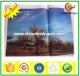 70-400GSM C2s Art Coated Paper