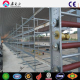 L'alimentation automatique de la couche d'oeufs de délestage Colleting système des cages de la machine