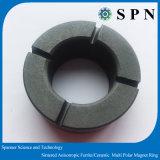 마이크로 모터를 위한 단단한 알파철 또는 세라믹 소결된 다극 반지 영구 자석
