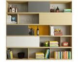 Module d'étagère de meubles de panneau de modèle moderne pour la mémoire