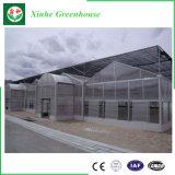 Van de Serre van de Dekking van het Blad van het polycarbonaat Landbouw PC- Blad Behandelde Serre