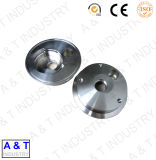 CNC past de Draaiende Delen van het Roestvrij staal/van het Messing/van het Aluminium aan