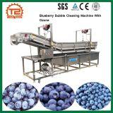 Fruit en de Plantaardige Schoonmakende Machine van de Bel van de Bosbes van de Wasmachine met Ozon