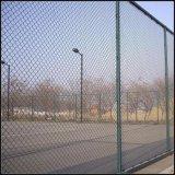 Rete fissa rivestita di collegamento Chain del PVC della barriera dei campi di sport