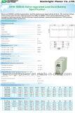 Информация о проезде 2V1000ah Gfm-1000 2V аккумулятор RoHS CE UL