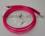 Câble de réseau de cordon de connexion de la jupe CAT6A 550MHz de Lszh