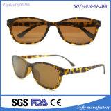 Популярная новая рамка Eyeglasses стекел чтения Tr90