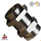 メートル糸のかみ傷のタイプ管継手(まっすぐな隔壁付属品) 6c。 6D