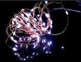 33FT met 100 Draad van het Koper LEDs maken de Lichten de Decoratieve LEIDENE Lichten van het Koord waterdicht