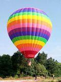 De opblaasbare Ballon van de Hete Lucht van de reclame