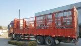 Trennzeichen des SGS-anerkanntes elektrisches magnetisches Eisen-Rcdf-6 für Bergbau/Kohle-/Baumaterial-Pflanze