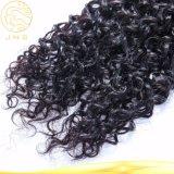 安い巻き毛の波のブラジルにバージンの黒の人間の毛髪の編むこと