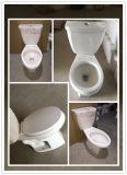 Het speciale Tweedelige Toilet van Siphonic van de Prijs
