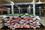 Architecture를 위한 304 310S Stainless Steel Flat Bar
