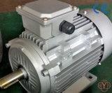 Motor de CA trifásicos - IEC- Tefc (IP54) - fundición de hierro Frame-Ie2