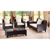 Мебель ротанга PE самомоднейшей конструкции (WS-06035)