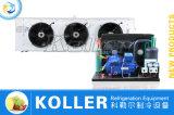 Grosser Kapazitäts-Gefriermaschine-Raum mit Bock-Kompressor
