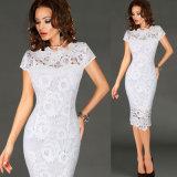 Frauen-elegantes reizvolles Büro-Kleid-Partei-Abend-Kleid