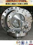 ANSI B16.5 Wp304/316 Class150 rf de Montage van de Flenzen van de Pijp van het Roestvrij staal
