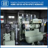 Промышленного воздушного компрессора высокого давления газа компрессор