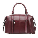 De Zak van de Hand van dame Genuine Leather Handbags Fashion Zweep