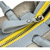 Borsa della signora di sacchetto della spalla delle donne di modo del commercio all'ingrosso di prezzi di fabbrica Yc-H060 Tote