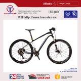 بالجملة درّاجة إطار 21 سرعات ألومنيوم يطوي درّاجة