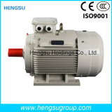 Электрический двигатель индукции AC Ye3 132kw-8p трехфазный асинхронный Squirrel-Cage для водяной помпы, компрессора воздуха