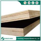 Yuncheng Tianyuanの海洋の材木の型枠18mmのフィルムは合板に直面した