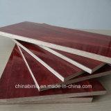 La película rojo frente 1220x2440mm la construcción de madera contrachapada de contrachapado marino